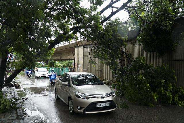 Hải Phòng:  Phố phường ngổn ngang sau bão số 3 - 1