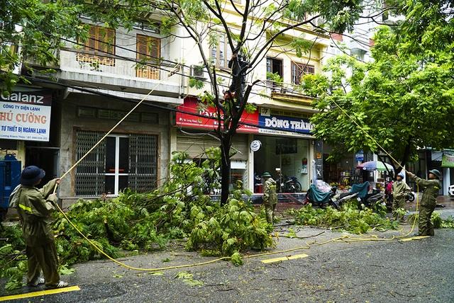 Hải Phòng:  Phố phường ngổn ngang sau bão số 3 - 12