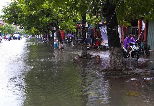 Hải Phòng:  Phố phường ngổn ngang sau bão số 3 - 4