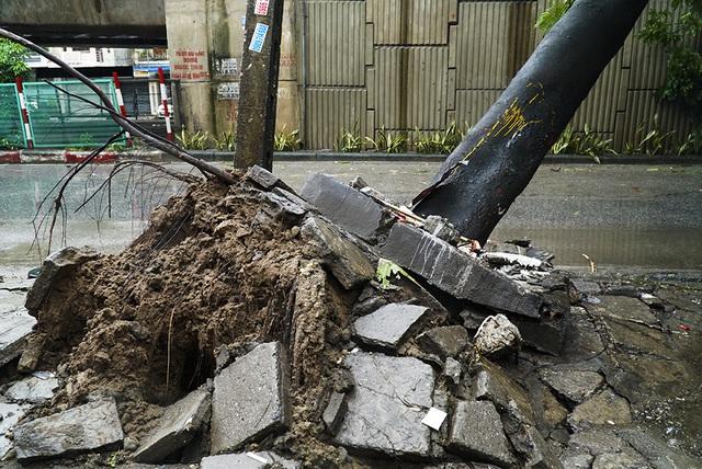 Hải Phòng:  Phố phường ngổn ngang sau bão số 3 - 2