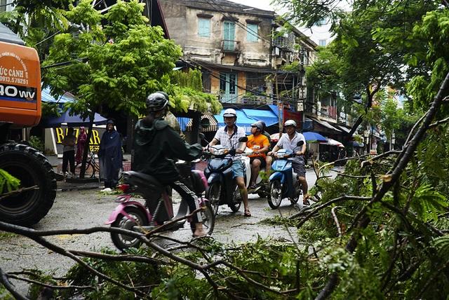 Hải Phòng:  Phố phường ngổn ngang sau bão số 3 - 10