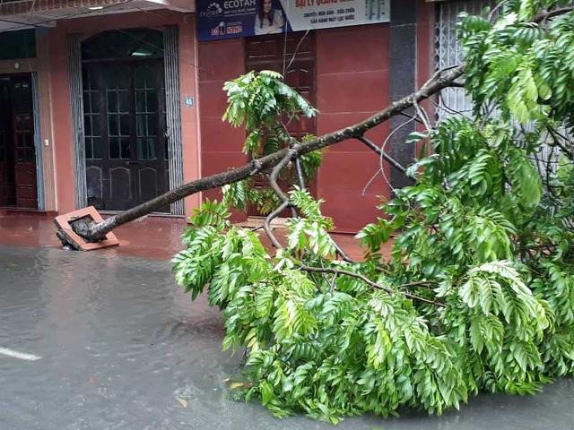 Sau bão, nhiều tuyến đường Thái Bình chìm trong nước - 6