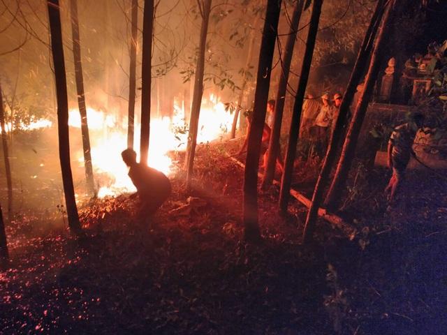 """Dân làng tự chữa cháy, thắng """"giặc lửa"""" trong đêm ở khu rừng keo - 2"""
