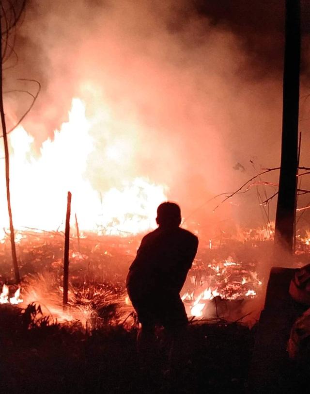 """Dân làng tự chữa cháy, thắng """"giặc lửa"""" trong đêm ở khu rừng keo - 4"""