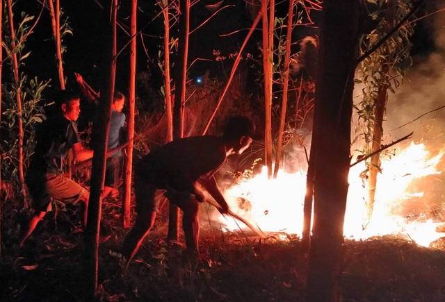 """Dân làng tự chữa cháy, thắng """"giặc lửa"""" trong đêm ở khu rừng keo - 7"""