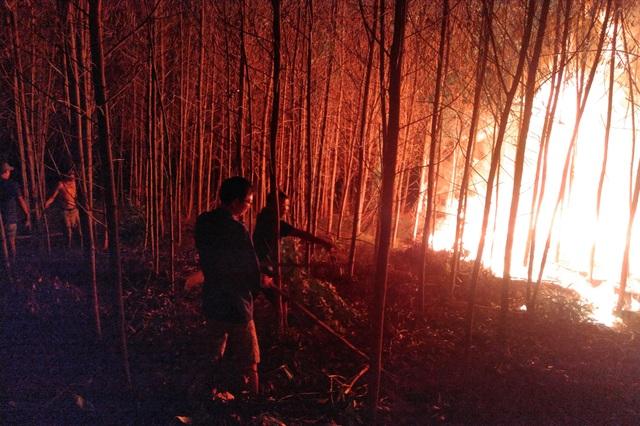 """Dân làng tự chữa cháy, thắng """"giặc lửa"""" trong đêm ở khu rừng keo - 8"""