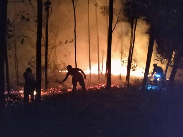 """Dân làng tự chữa cháy, thắng """"giặc lửa"""" trong đêm ở khu rừng keo - 9"""