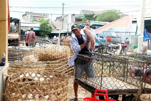 Kiểm soát chặt chẽ chợ đầu mối khi dịch tả lợn Châu Phi lan rộng - 2
