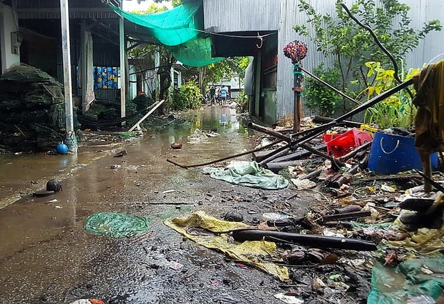 Cà Mau: Thủy triều dâng cao, sóng lớn gây sạt lở nghiêm trọng đê biển  - 3