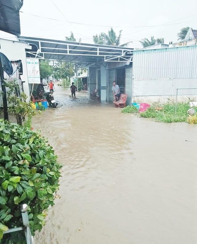 Cà Mau: Thủy triều dâng cao, sóng lớn gây sạt lở nghiêm trọng đê biển  - 5