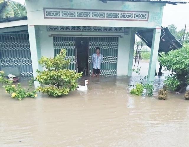 Cà Mau: Thủy triều dâng cao, sóng lớn gây sạt lở nghiêm trọng đê biển  - 4