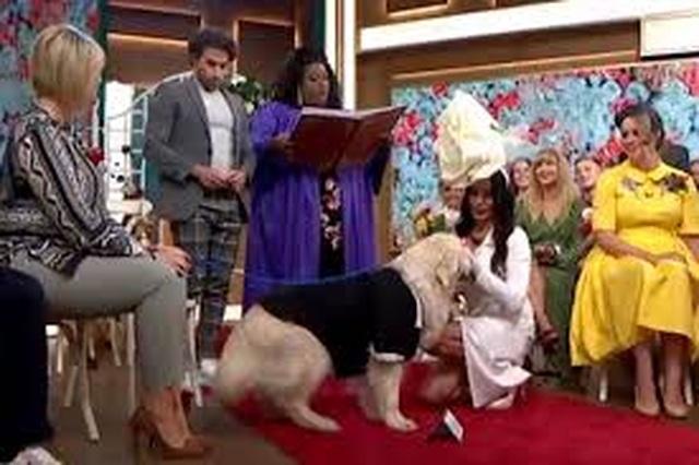 Người mẫu Anh làm đám cưới với thú cưng sau 220 lần hẹn hò thất bại - 3