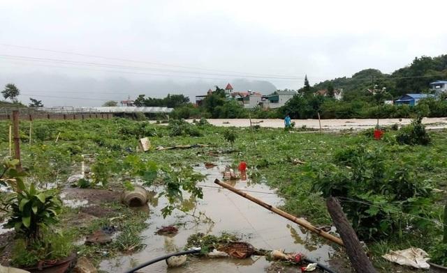 Sơn La: 1 người chết, hàng trăm ngôi nhà ngập lụt vì mưa bão - 6