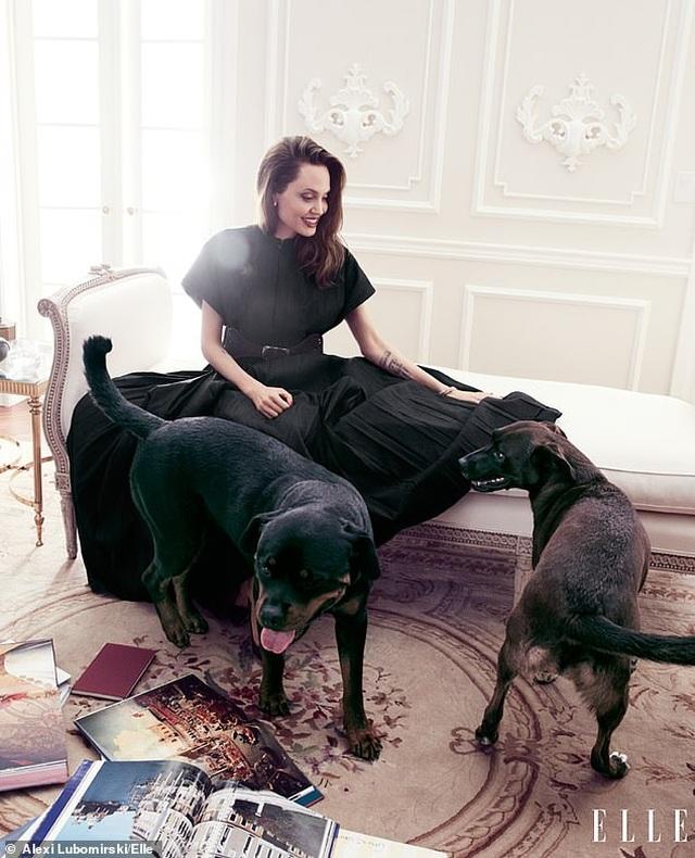 """Angelina Jolie muốn có thật nhiều """"phụ nữ tinh quái"""" trên thế giới - 7"""