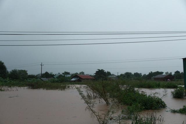 700 nhà dân bị ngập lụt do mưa lớn kéo dài - 3