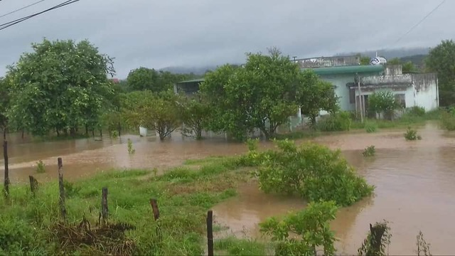 Đắk Lắk mênh mông nước ngập sau nhiều giờ mưa lớn - 5