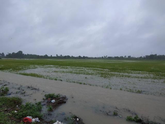 Đắk Lắk mênh mông nước ngập sau nhiều giờ mưa lớn - 4