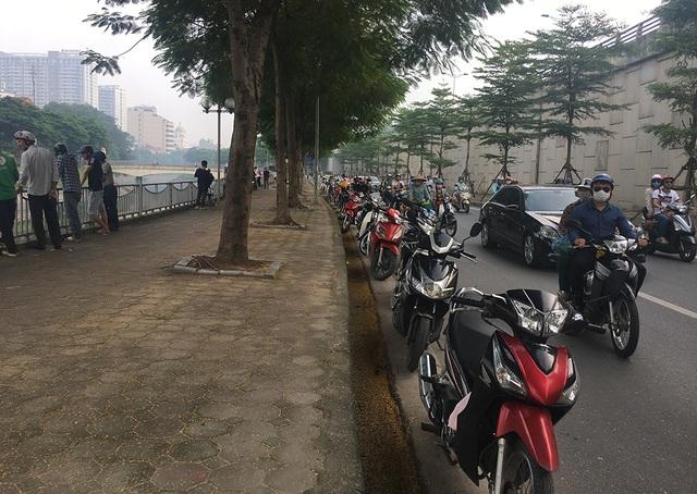 Dân câu kiếm cá sông Tô Lịch dễ như đi chơi - 9