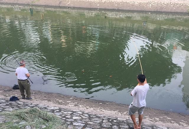 Dân câu kiếm cá sông Tô Lịch dễ như đi chơi - 4