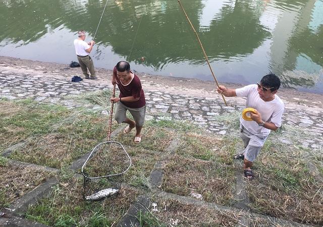 Dân câu kiếm cá sông Tô Lịch dễ như đi chơi - 6