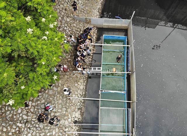 Xem chuyên gia Nhật Bản rửa mặt, tắm bằng nước sông Tô Lịch - 2