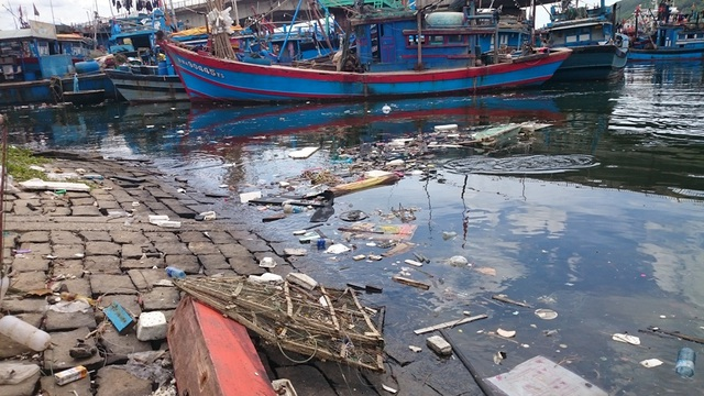 Vì sao âu thuyền, cảng cá lớn nhất Đà Nẵng ô nhiễm nặng? - 1