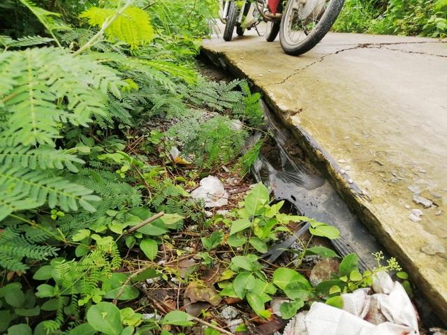Bạc Liêu: Sụp lún nuốt chửng đường nông thôn, dân xuống xe dắt bộ cũng… run - 7