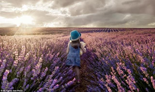 Những bức ảnh tuyệt đẹp về Mẹ Thiên nhiên trong giải thưởng nhiếp ảnh Agora 2019 - 6