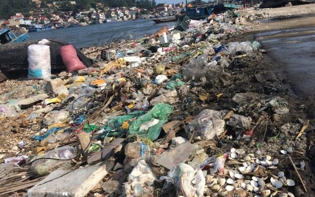 Ám ảnh với ô nhiễm tại cảng cá lớn nhất Bắc Trung Bộ - 4