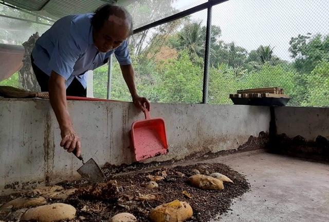 Nông dân Thanh Hóa lãi lớn nhờ... nuôi ruồi đẻ trứng vàng - 3
