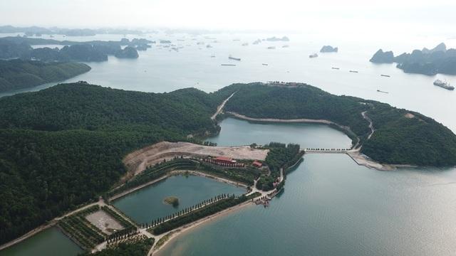 Công trình trái phép trên vịnh Bái Tử Long: Càng phạt càng... xây mạnh! - 1