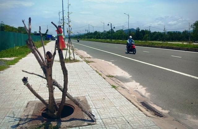 Hàng loạt cống trên tuyến đường đẹp nhất nhì Phú Quốc há miệng bẫy người! - 1
