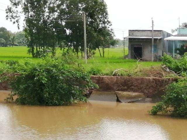 """Sạt lở ở Bạc Liêu: """"Tan nát"""" bờ kênh quê! - 7"""