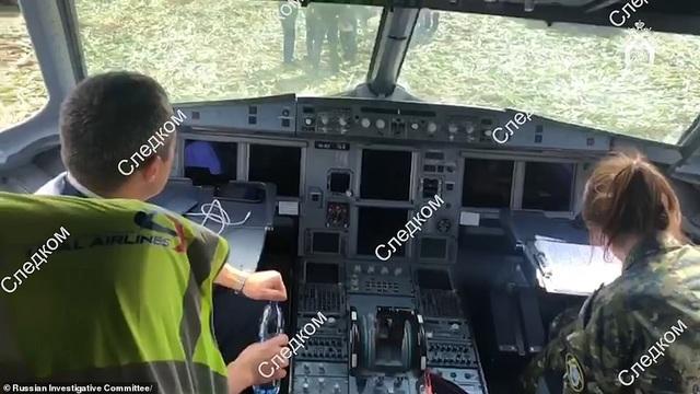 Video chim lao vào động cơ làm máy bay Nga chở 233 người tiếp đất bằng bụng - 4