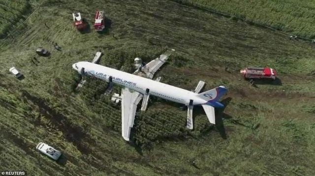 Video chim lao vào động cơ làm máy bay Nga chở 233 người tiếp đất bằng bụng - 2