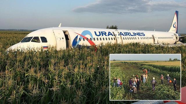 Đâm phải đàn chim, máy bay Nga chở 233 người lê bụng xuống ruộng ngô - 1