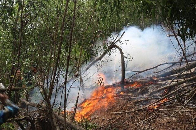 Hơn 6 giờ chiến đấu với giặc lửa trên núi Hang - 1