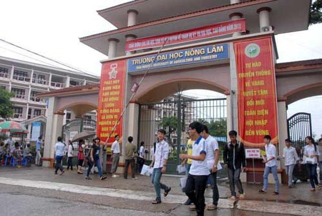 Yêu cầu Trường ĐH Nông Lâm – ĐH Thái Nguyên, CĐ Thương Mại và Du lịch Thái Nguyên báo cáo công tác thi ngoại ngữ, tin học - 1