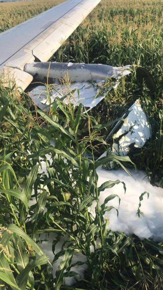 Video chim lao vào động cơ làm máy bay Nga chở 233 người tiếp đất bằng bụng - 7