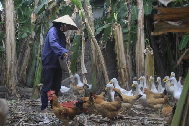Khát khao trở thành cô giáo, nữ sinh nhà nghèo nuôi gà, bán cà phê gom góp tiền công để nhập học - 6