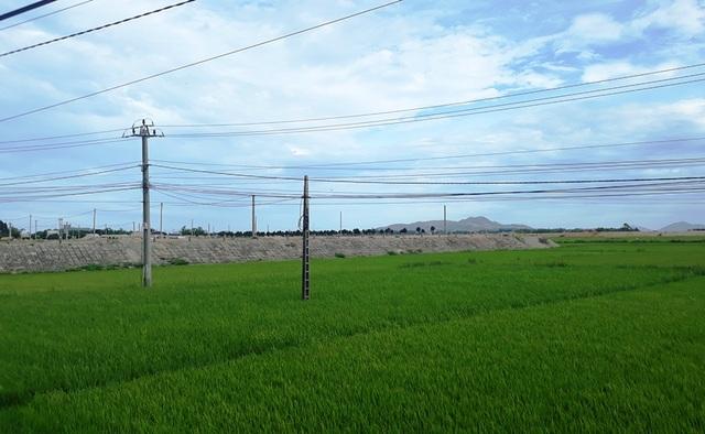 Lấp 24ha đất trồng lúa xây khu tái định cư, sau 10 năm chỉ vài hộ dân đến ở! - 8