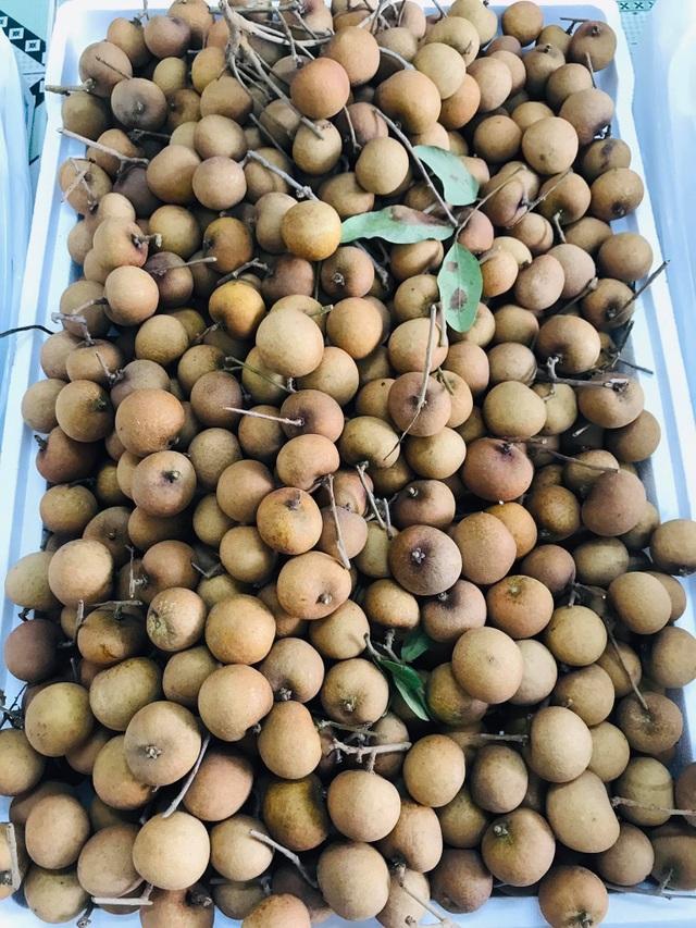 Nhãn bắp cải, hàng Việt cực hiếm, giá cực đắt có tiền khó mua - 3
