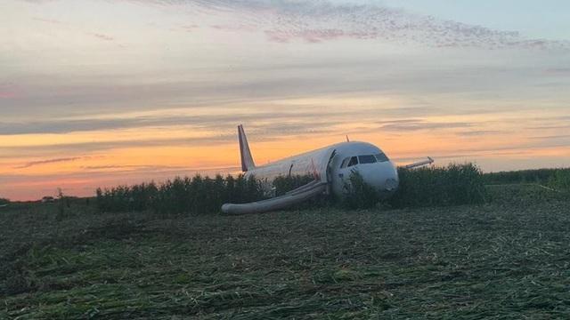 """Phi công điều khiển máy bay chở 233 người tiếp đất bằng bụng trở thành """"Anh hùng Nga"""" - 2"""