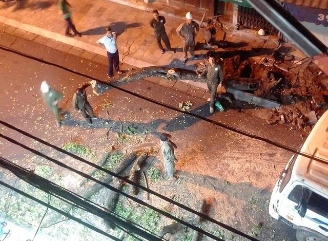 Thực hư thông tin cây sưa đỏ trên phố cổ bị chặt hạ trong đêm không rõ lý do - 1