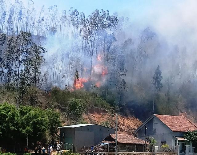 Cháy 3ha rừng trồng, uy hiếp nhiều nhà dân - 2