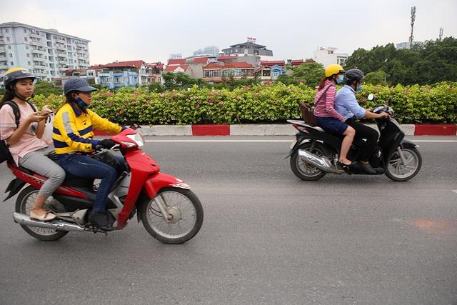 Con đường hoa giấy hiếm có ở Hà Nội - 6