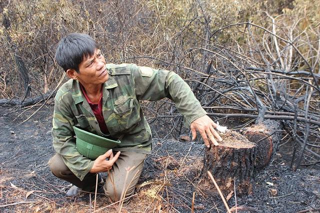 Người đàn ông đặc biệt cứu rừng ở Hà Tĩnh được Chủ tịch tỉnh tặng bằng khen - 1