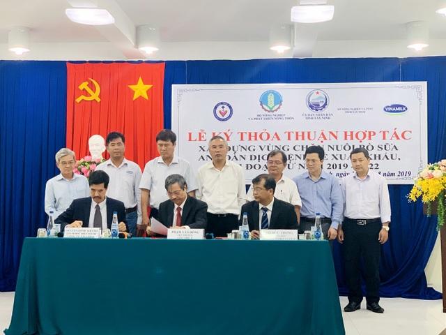 """""""Resort"""" bò sữa Tây Ninh là hạt nhân để xây dựng vùng chăn nuôi bò sữa an toàn - 1"""