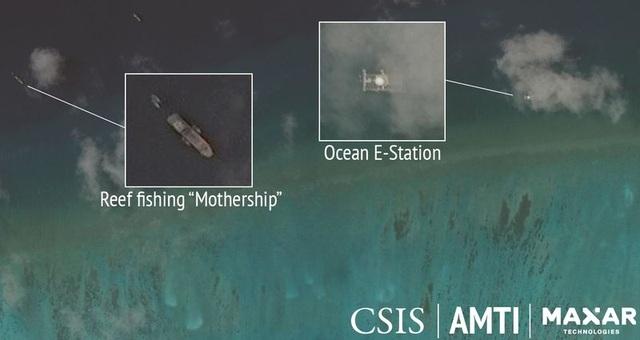 """""""Cơn khát"""" sò tai tượng của đội tàu Trung Quốc tàn phá Biển Đông - 4"""