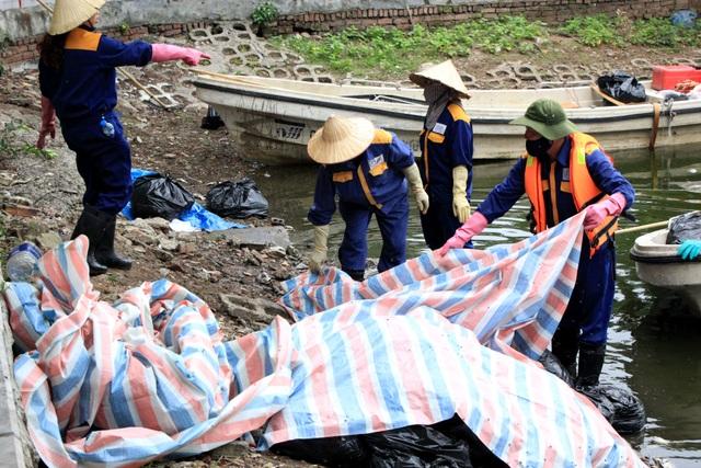 Hà Nội: Cá chết hàng loạt bốc mùi hôi thối trên hồ Trúc Bạch - 7